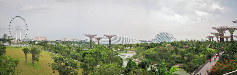 Singapore Marina Bay. Gardens by the Bay