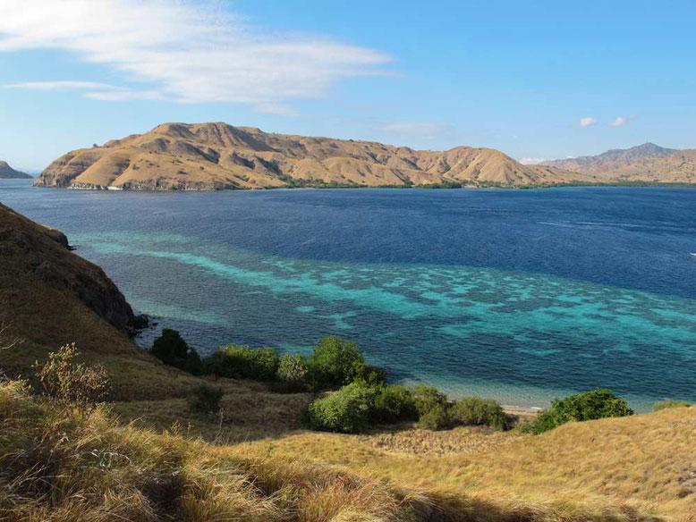 Komodo: l'isola dei draghi. Dove dormire a Komodo