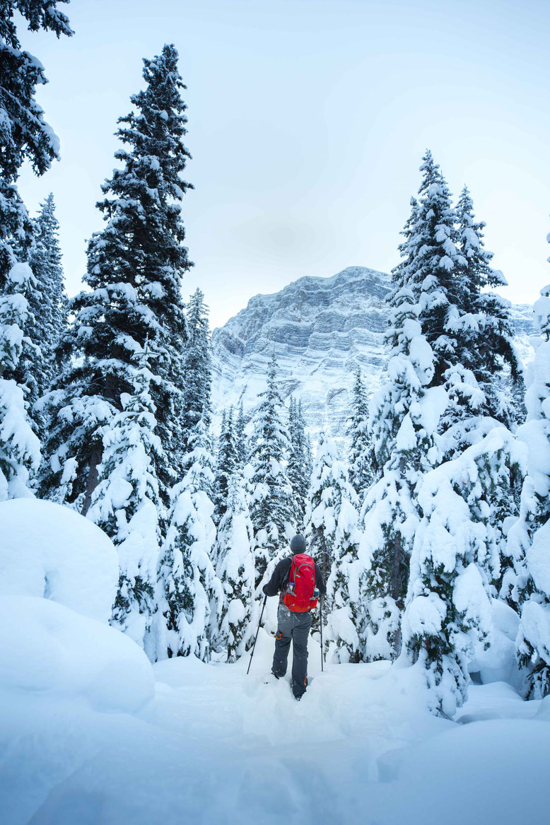 Canadian Rockies in Winter Snow Shoeing Boom Lake