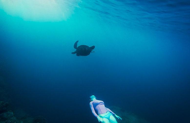 Reasons why you shoul visit Kauai