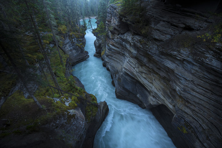 Travel Guide to the Canadian Rockies, park pass, Discovery Pass