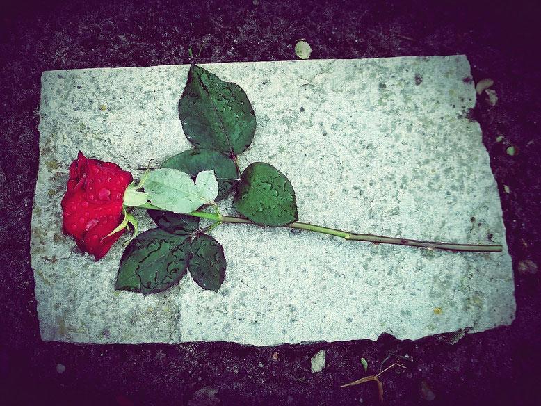 Grablege Bestattungslexikon, lexikon-bestattungen, Bestattungsdienste, Bestattungsbedarf Mit der traditionellen Grablege wird ein verstorbener Mensch im Rahmen eines Bestattungs-rituals in einem Sarg, oder seine Asche in einer Urne, auf einem Friedhof bei