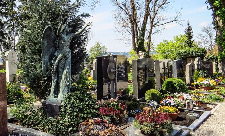 Friedhofszwang Bestattungslexikon lexikon-bestattungen