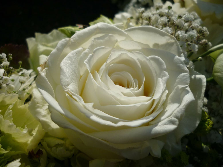 Leichenwaschung Bestattungslexikon, lexikon-bestattungen, Bestattungsdienste, Bestattungsbedarf
