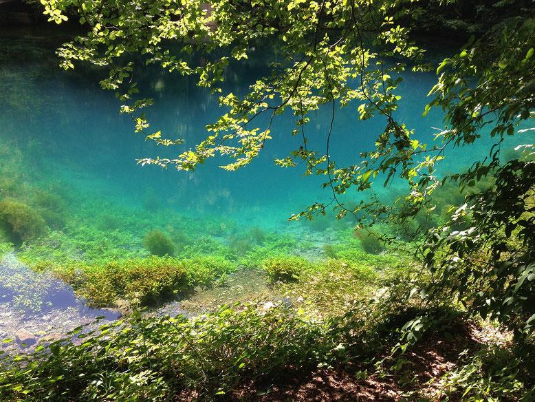 Bestattung Alb-Donau-Kreis lexikon-bestattungen