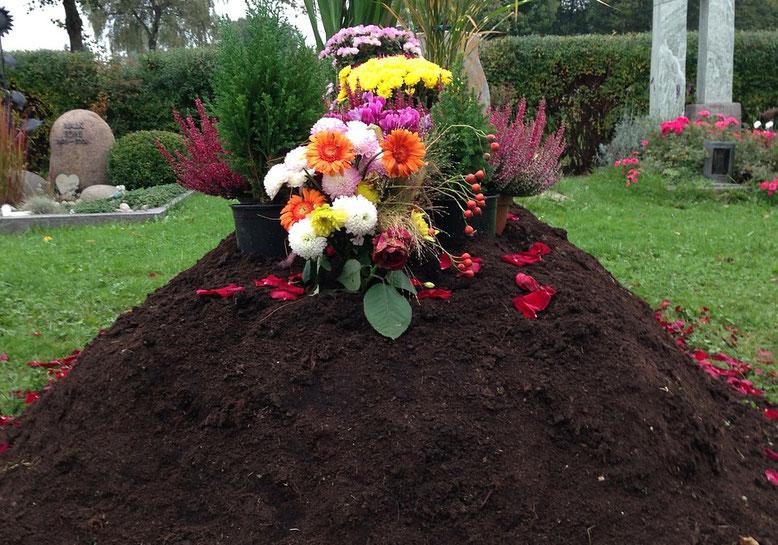 Erdbestattung Bestattungslexikon, lexikon-bestattungen, Bestattungsdienste, Bestattungsbedarf Mit einer Erdbestattung bezeichnet man die Ganzkörperbestattung eines Verstorbenen in einem Erdgrab
