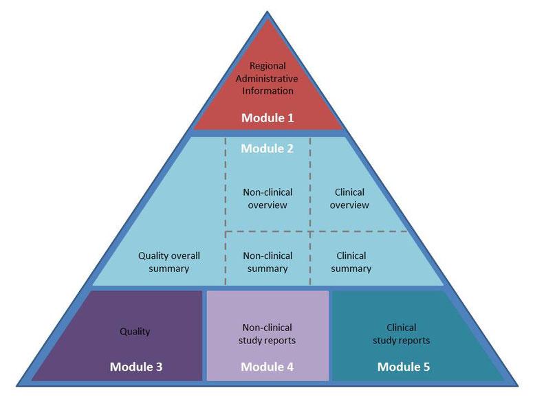 Aufbau des Common Technical Document-Dossier