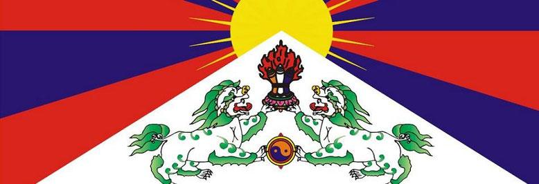 Tibetaanse Spaniels, Tibetan Spaniel, Tibet Spaniel