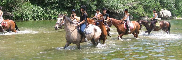 balade à cheval dans l'eau