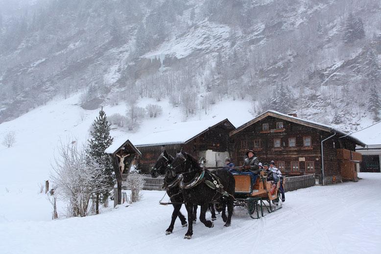 giro in slitta trainata da cavalli alla fine della valle Hüttschlag