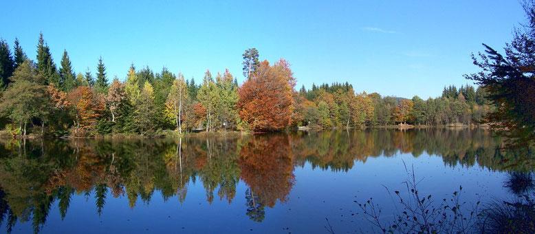 Am Ossiacher Tauern befindet sich der Tauernteich. Herbststimmung am Teich 2010