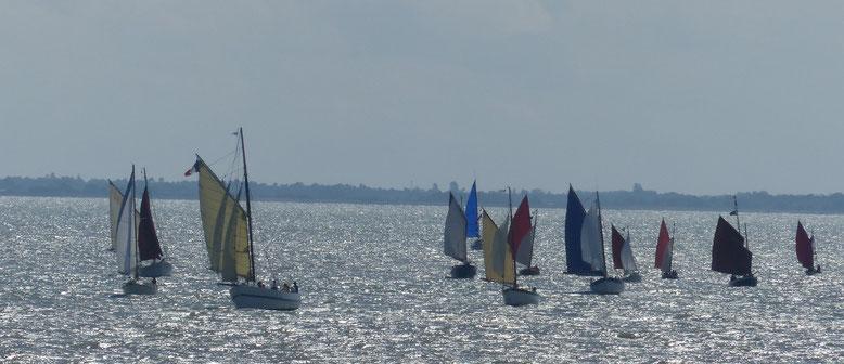 La flottille de PNCM toutes voiles dehors, cap sur le port sud