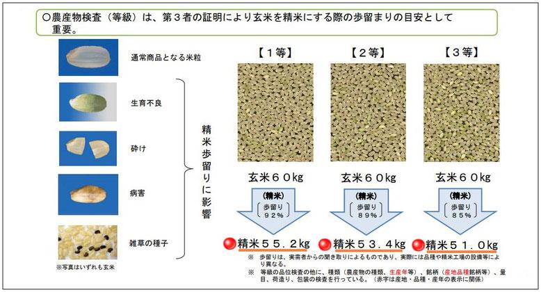 資料:消費者庁公式ホームページより引用