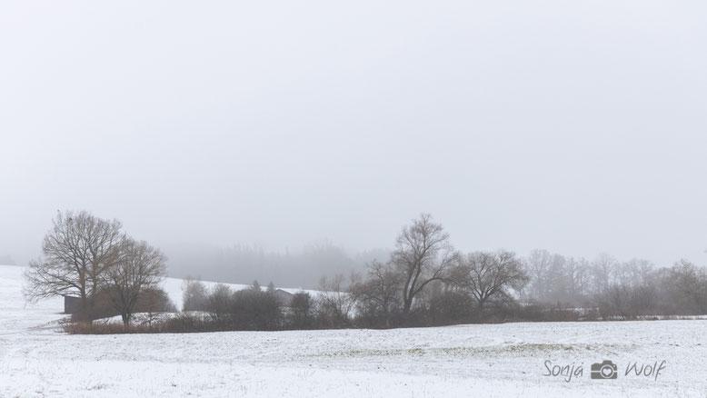 Schnee auf der Ostalb