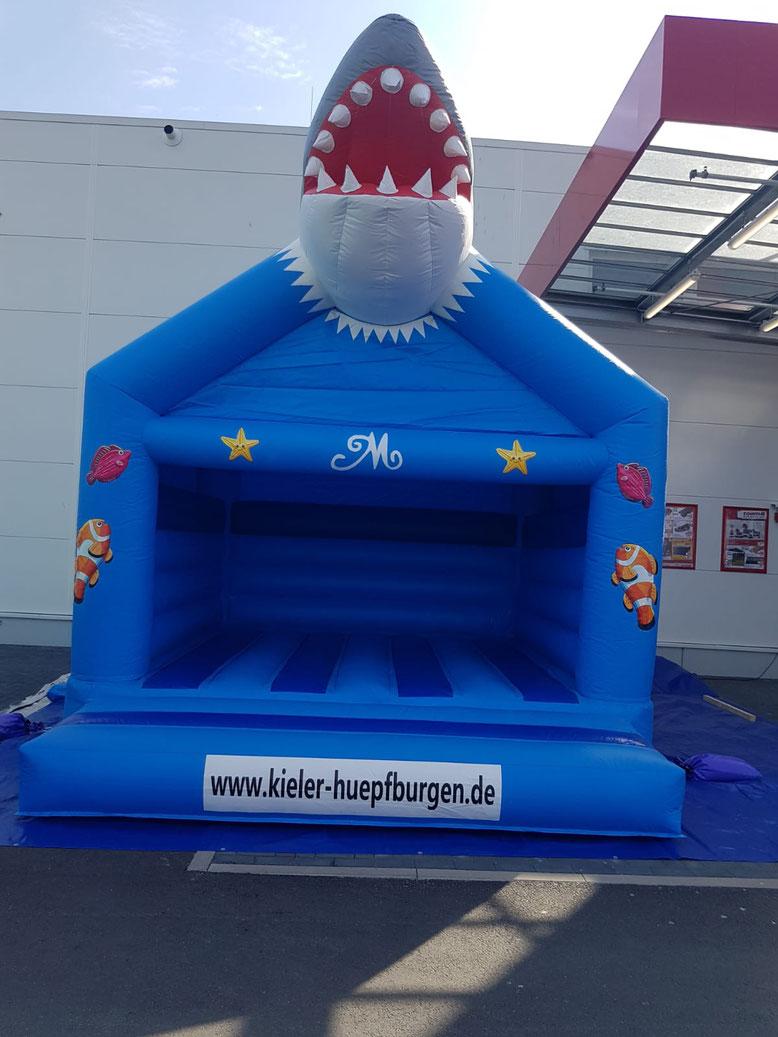 Bouncer mit Dach Springburg Hüpfkissen Shark Bounce Haus in Kiel mieten