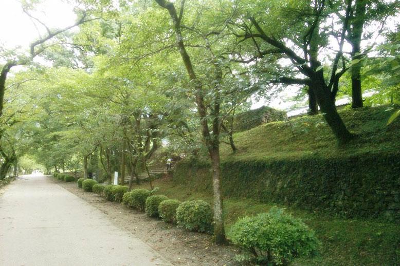 秋月城長屋門を遠くから撮影した写真