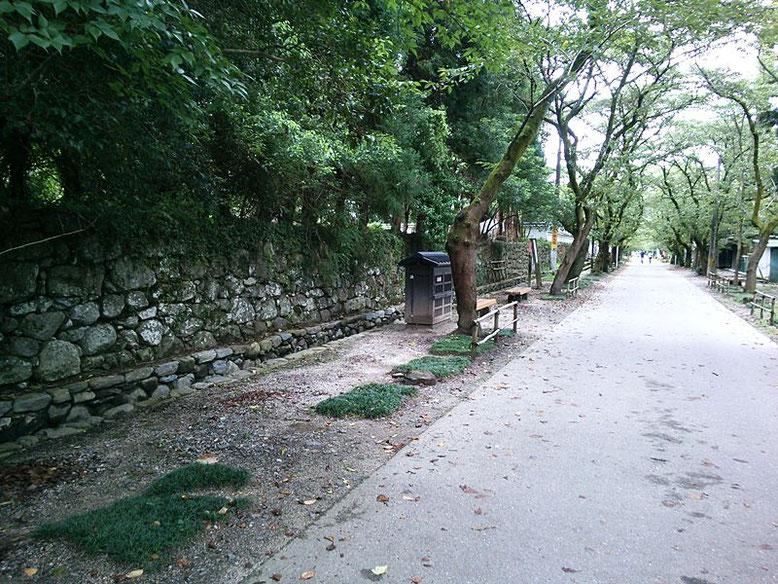 杉の馬場の写真
