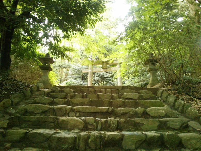 垂裕神社参道の写真。石段の上には鳥居が見えている。