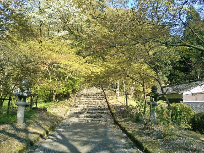 垂裕神社の参道の写真