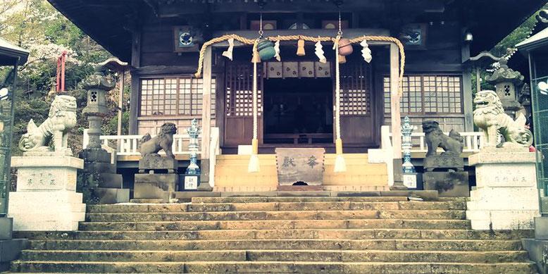 陶山神社の狛犬07番の写真