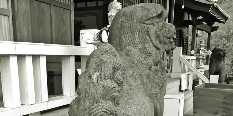 陶山神社の狛犬08番の写真