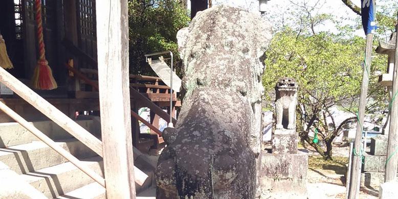 與止日女神社の狛犬01番の写真
