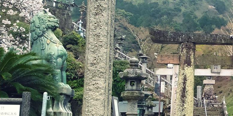 陶山神社の狛犬01番の写真