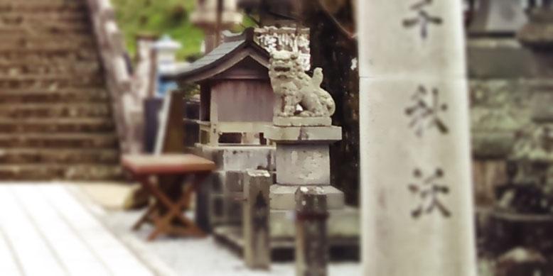 陶山神社の狛犬03番の写真