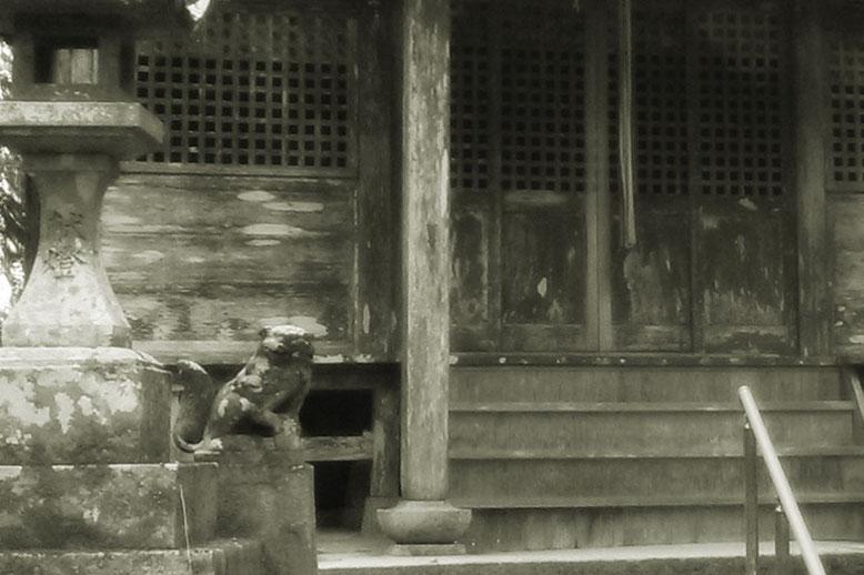 後鳥羽神社の狛犬02番の写真