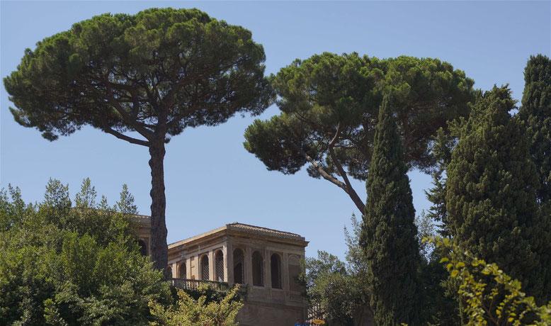 Blick vom Kolosseum auf den Palatin. Roms vornehmstes Viertel mit vielen Parkanlagen.