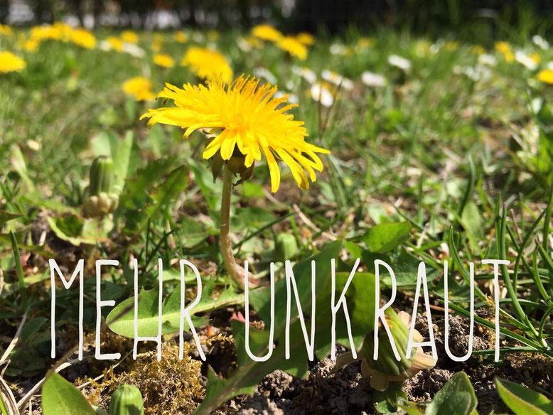 """Löwenzahn mit dem Untertitel """"Mehr Unkraut""""."""