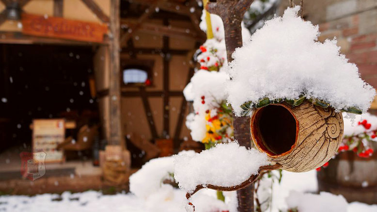 Winter auf dem Spielmannshof Seitenroda