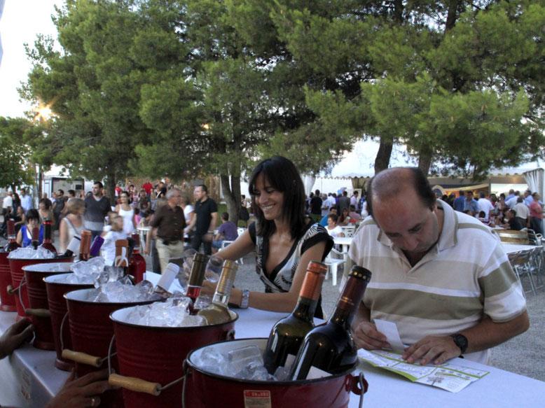 Catas festival vino somontano