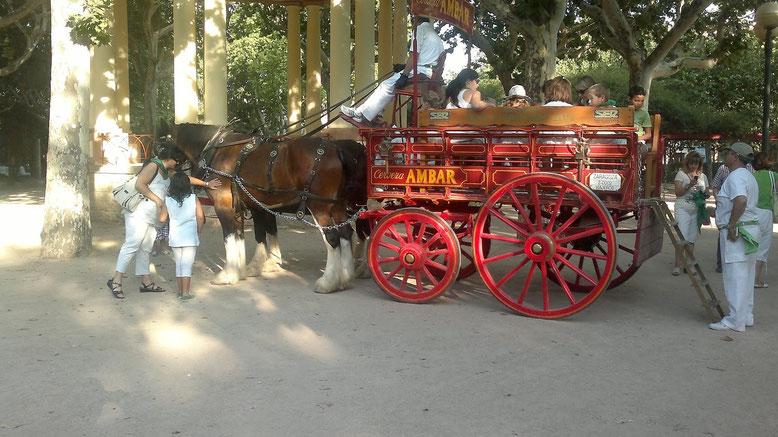 Paseo a los niñoz en la Narria de La Zaragozana San Lorenzo 2015