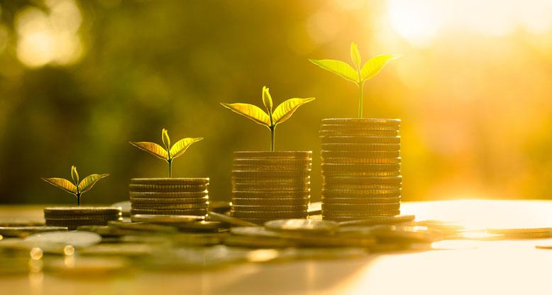 Positiver Cashflow
