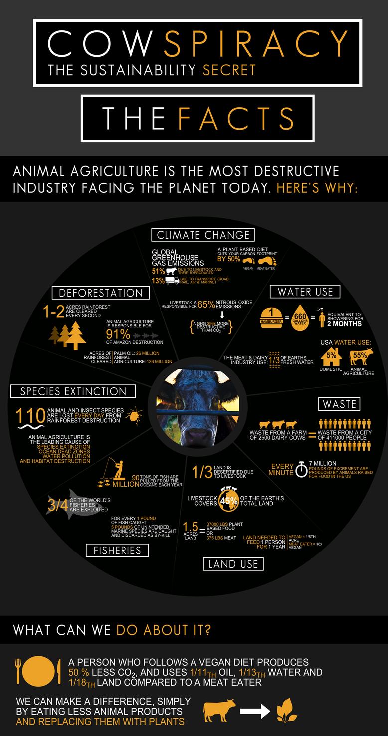 Voor bronnen en auteur, ga naar https://www.cowspiracy.com/infographic