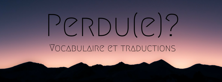 Perdue ? Vocabulaire et traduction