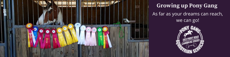 There is no better place for Horseback riding lessons as Pony Gang in Camden SC