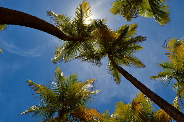 Is it Worth to Go to Puerto Rico - Sunny Days