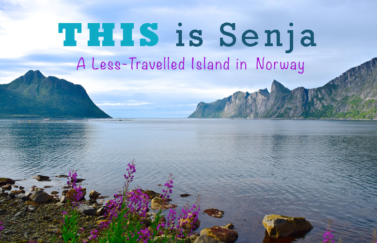 This is Senja - a Less-Travelled Island in Norway