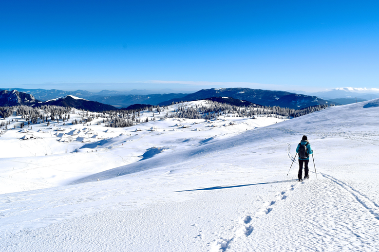 Top 6 Winter Activities in Slovenia - Snowshoeing at Velika Planina