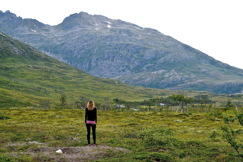 From Tromso to the Lofoten Islands - Kvaloya
