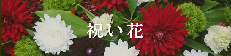 府中 花屋 はなはん 祝い花