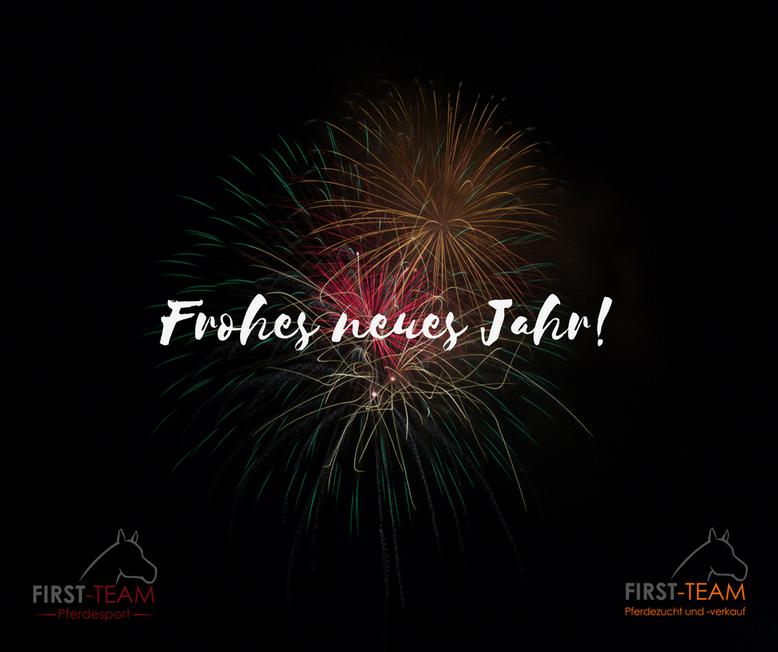Frohes neues Jahr & alle guten Wünsche für 2017! - Reitschule FIRST ...