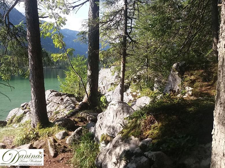 Kraftquelle Wald - Beim Betrachten von Naturbildern sinkt der Blutdruck, Du fühlst Dich umgehend entspannter und wohler.