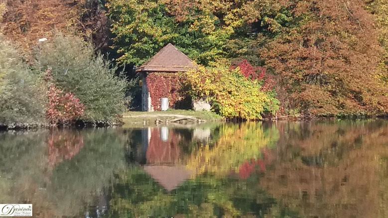 Salzburg Leopoldskroner Weiher im Herbst