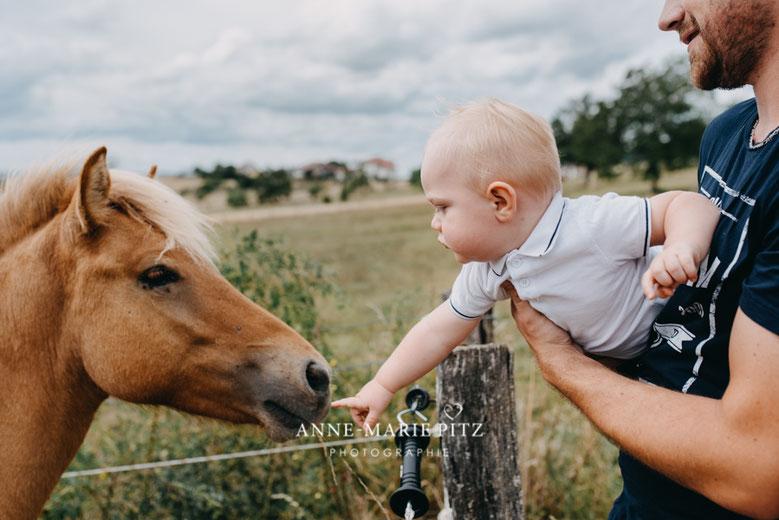 photographe grossesse bebe pitz sarreguemines