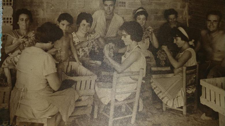 Imagen cedida para el Marino Dénia. Un grupo de mujeres encajona moscatel en la panera del Molí (Dénia) a principios de los sesenta.