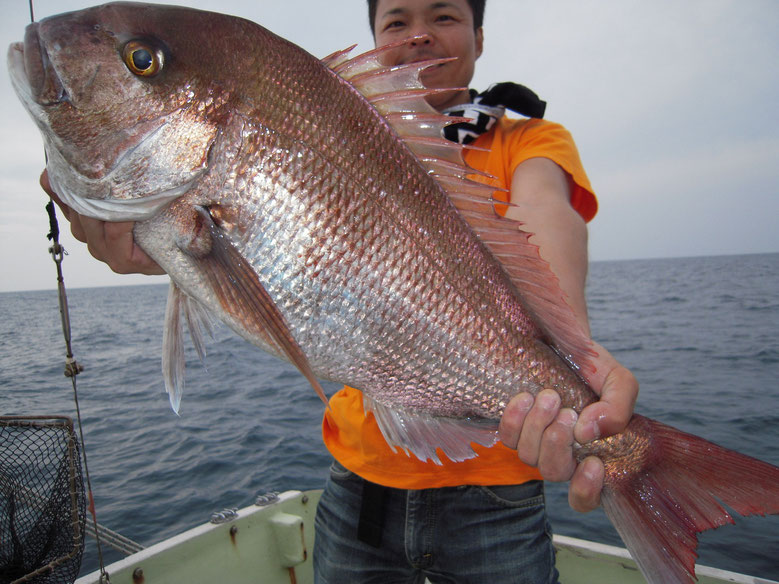↑↓65cm前後 体の大きい人は魚が小さく見える