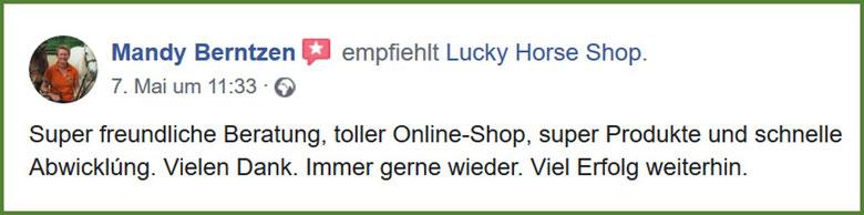Bewertung Lucky Horse Shop, Gelassenheitstraining Hindernis, Kinderreitschule, Hippolini